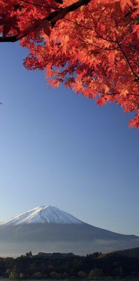 皇牌日本本州八天精選遊 – AC $3,096.00 起 (含稅)