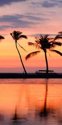 夏威夷 4 至 7 天享受逍遙遊 $428.00 起