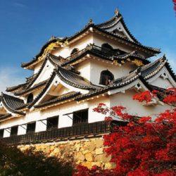 皇牌日本本州八天精選遊 – 加航 (10月至 11月)