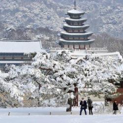 韓國首爾、濟州、釜山 8 天精彩遊