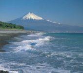 鮪魚等18種手握壽司吃到飽!駿河灣短程遊覽船眺望世界遺產/ 富士山 構成群三保松樹原&白絲瀑布