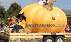 San Francisco Travel – Newsletter