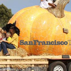 San Francisco Travel – Newsletter