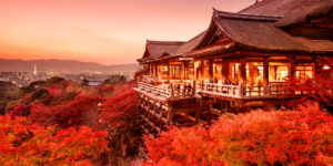 (JAL) 日本航空- 皇牌日本本州八天精選遊 –   日航 (5 – 6  月)