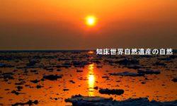 日本北海道東北14天