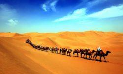 沙漠駝鈴 中原文化 絲綢之路15天 Sep 18 (NH)