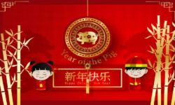2019 Chinese New Year