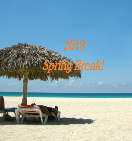 2019 Spring Break Cruise Sales