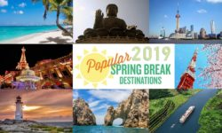 2019 Spring Break Cruise Sales