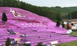 (AC) 日本北海道東北 14 天團