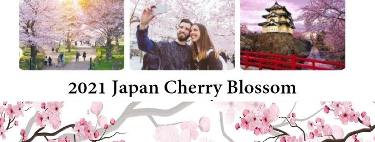 2021 Cherry Blossom Cruise 出凡脫俗櫻花盛開