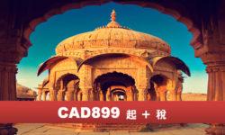印度黃金三角7天  後續尼泊爾5天 (NH) (純玩團)