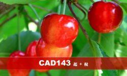 時令水果任採任吃 富士山五合目 河口湖富士山全景空中纜車 (編號 : 05520 )