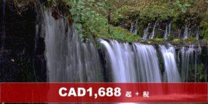 (AC)加航 – 東京 4 晚 + 輕井澤 2 晚自由行