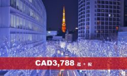 (AC) 皇牌日本本州八天精選遊 (暑期、聖誕)