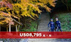 Japan Bike Tour 7 Days (A Cultural Journey in Temples and Tea Leaves)