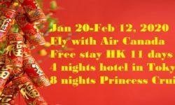 農曆新年機票+日本酒店+遊輪套餐