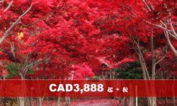 (AC) 北海道札幌秋天紅葉溫泉八天特色遊