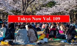 [TOKYO NOW vol. 109] As Winter Winds Down, Tokyo Comes Alive with Change