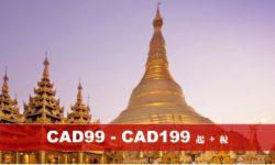 泰國曼谷芭提雅風情6天 (NH)