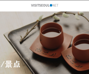 Visit Seoul (美食/景点) –  简体