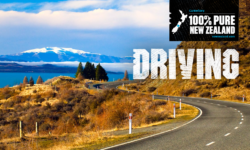 Tips for Driving in New Zealand