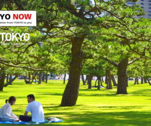 Tokyo Art and Culture Transcends Time and Space with Technology [TOKYO NOW vol. 123]
