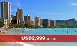 夏威夷休閒海島系列 (UV)